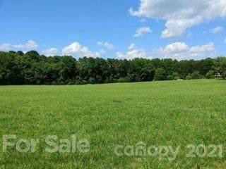 1334 Old Mountain Road, Statesville, NC 28677 (#3755684) :: Puma & Associates Realty Inc.
