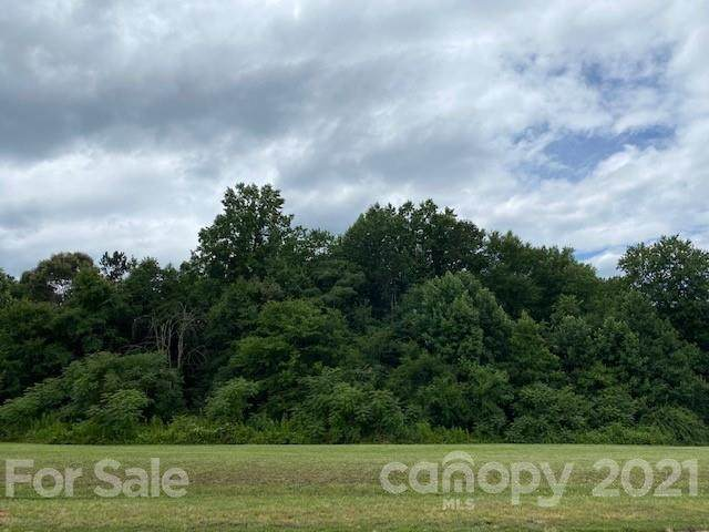 419 Fisher Farm Court, China Grove, NC 28023 (#3755728) :: Stephen Cooley Real Estate Group