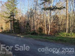 000 Woody Circle, Tryon, NC 28782 (#3757136) :: LePage Johnson Realty Group, LLC
