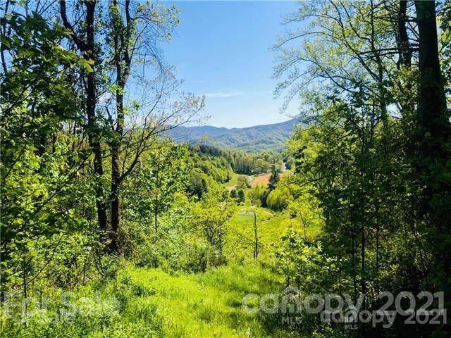 000 Cicero Creek Lane #3, Clyde, NC 28721 (#3758628) :: LePage Johnson Realty Group, LLC