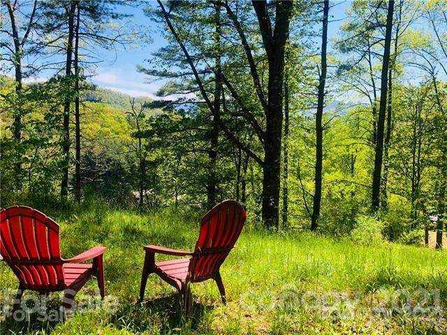 000 Gambrell Hill Road #4, Clyde, NC 28721 (#3758636) :: LePage Johnson Realty Group, LLC