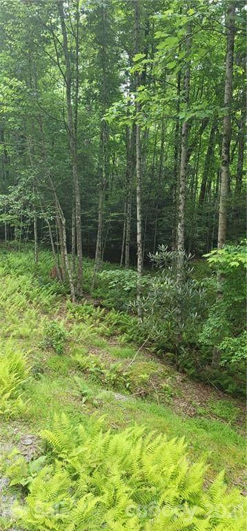 9999 Whitetail Trail T133a, Rosman, NC 28772 (#3761547) :: Keller Williams Professionals