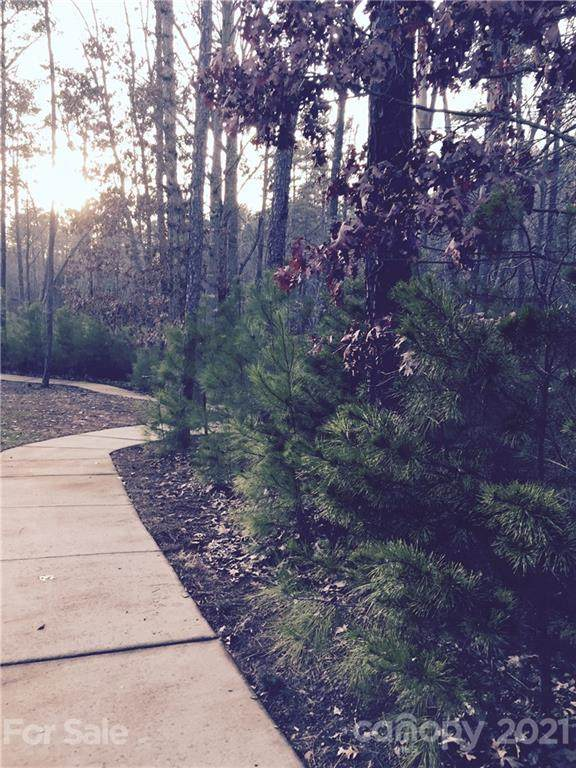 9607 Waneden Lane, Charlotte, NC 28278 (#3762047) :: High Vistas Realty