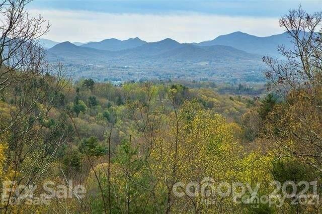 229 Starling Pass #107, Asheville, NC 28804 (#3763424) :: Modern Mountain Real Estate
