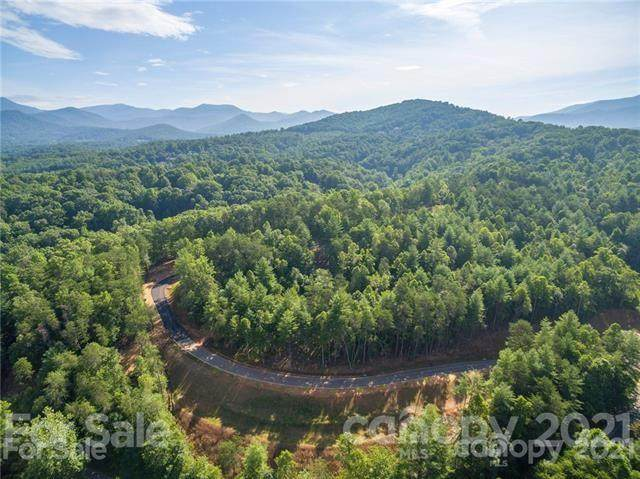 149 Riverbend Forest Drive #6, Asheville, NC 28805 (#3766017) :: BluAxis Realty