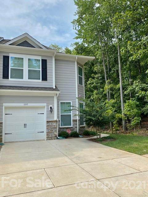 1095 Chicory Trace, Lake Wylie, SC 29710 (#3766379) :: Homes Charlotte