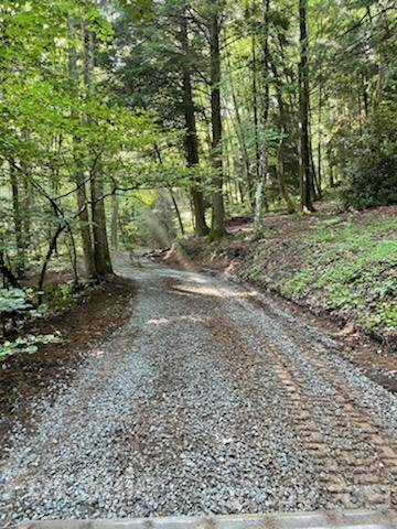 000 Ravenwood Trail, Black Mountain, NC 28711 (#3766781) :: DK Professionals