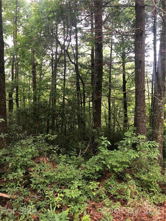 6 Chestnut Cove Drive #6, Brevard, NC 28712 (#3770094) :: Premier Realty NC