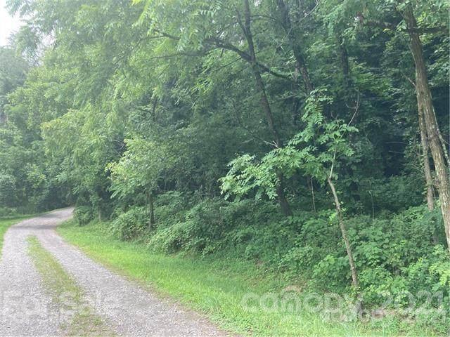 Lot 1 Windago Road #1, Weaverville, NC 28787 (#3772675) :: Home Finder Asheville