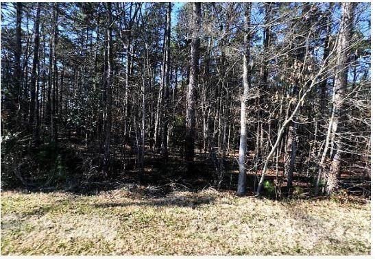 2801 Sam Newell Road, Matthews, NC 28105 (#3773071) :: Mossy Oak Properties Land and Luxury