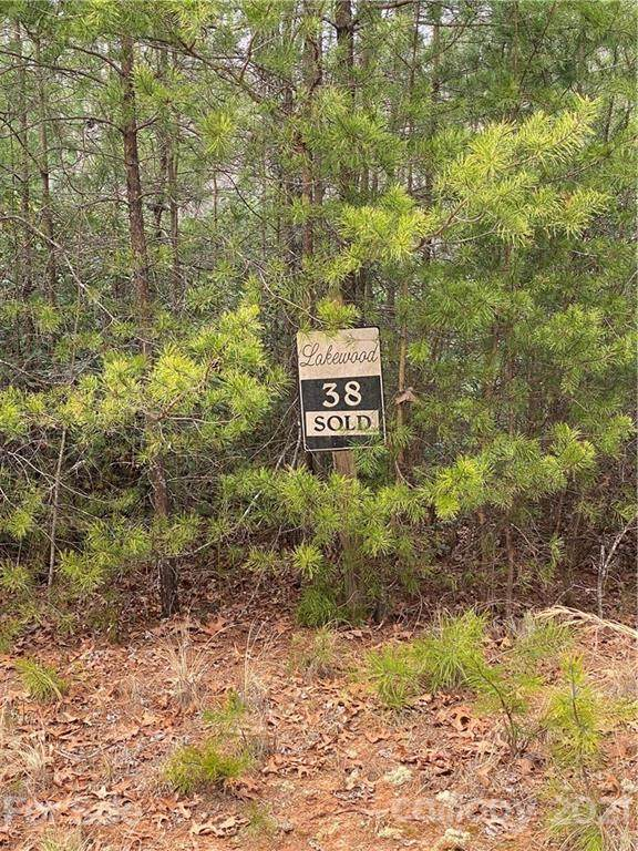 Lot #38 Cove Forest Road #38, Marion, NC 28752 (#3774423) :: Mossy Oak Properties Land and Luxury