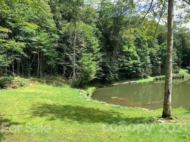 000 Cotton Trail, Mars Hill, NC 28754 (#3777479) :: Cloninger Properties