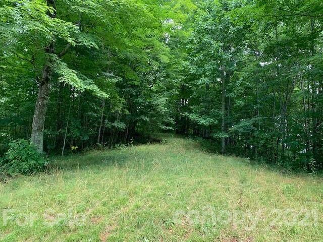 1115 Black Bear Drive, Mars Hill, NC 28754 (#3777528) :: Cloninger Properties