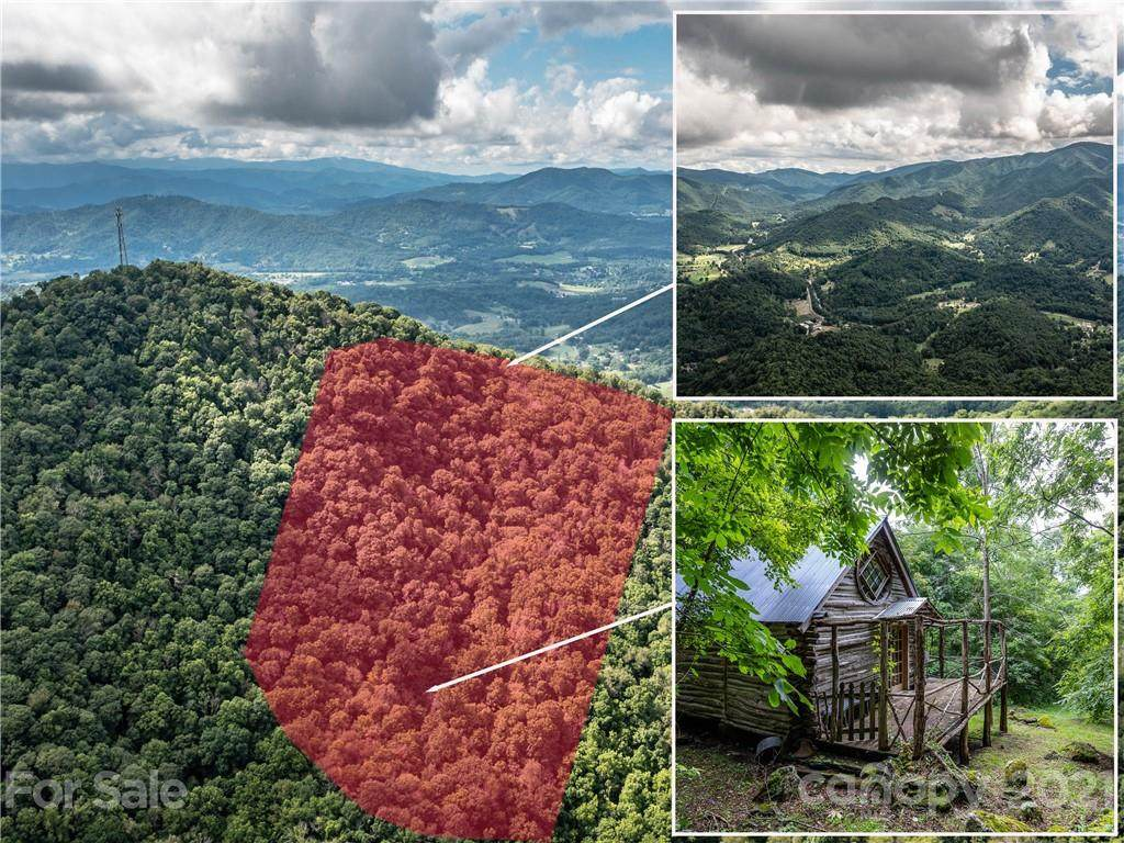 1001 Mountain Glen Road - Photo 1