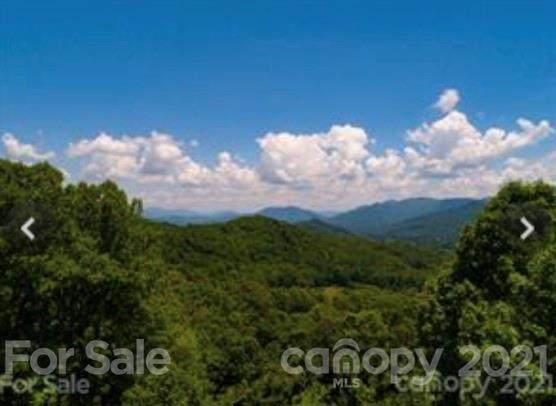 4205 Old Fiddle Road, Waynesville, NC 28751 (#3782518) :: Mossy Oak Properties Land and Luxury