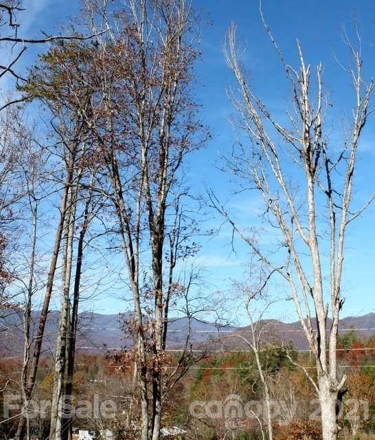 75 Cottage Settings Lane #276, Black Mountain, NC 28711 (#3782843) :: Todd Lemoine Team