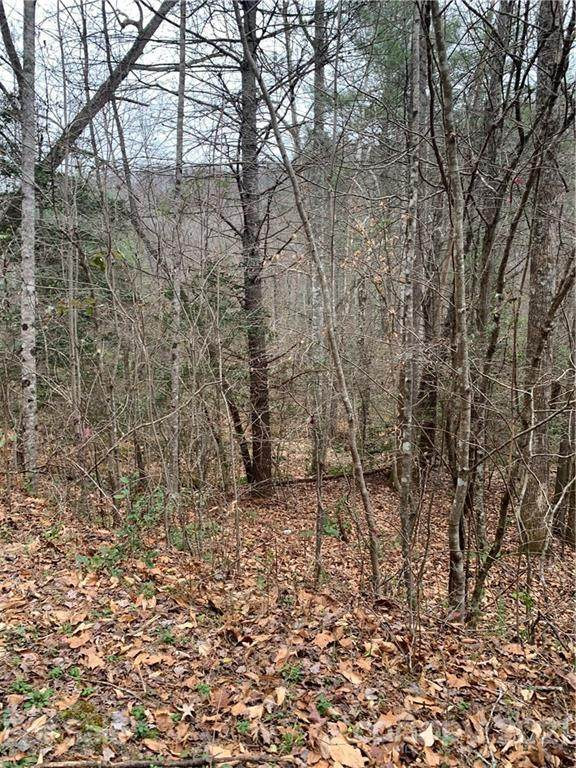 0000 Valley Drive #1, Lenoir, NC 28645 (#3784138) :: Lake Wylie Realty