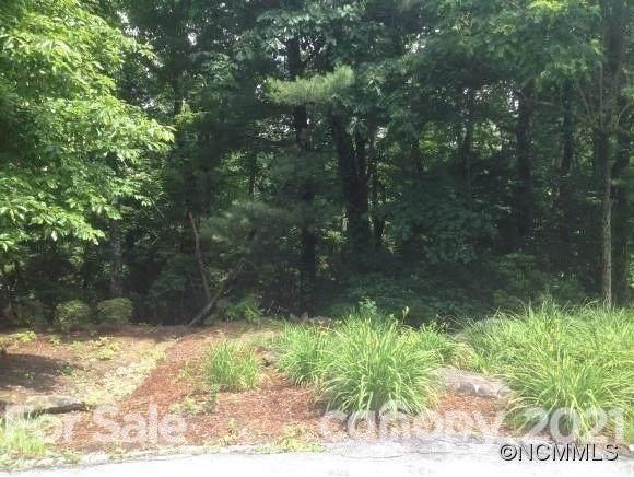 Lot  #48 Dalhousie Court #48, Flat Rock, NC 28731 (#3784767) :: Modern Mountain Real Estate