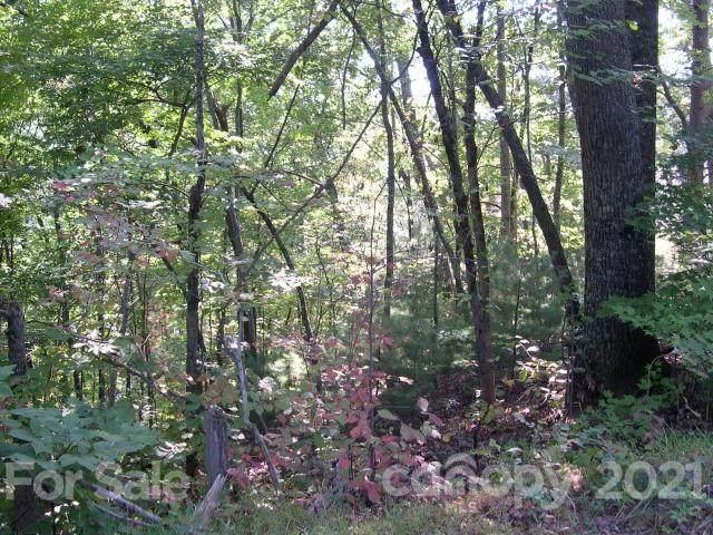 00 Seton Road, Lake Lure, NC 28746 (#3786890) :: Rhonda Wood Realty Group