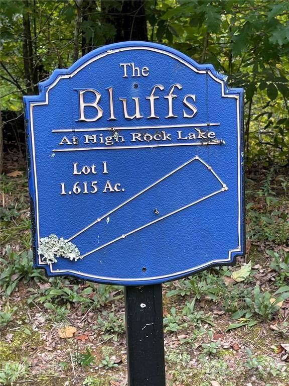 241 Bluff Lane #1, Salisbury, NC 28146 (#3788433) :: Todd Lemoine Team