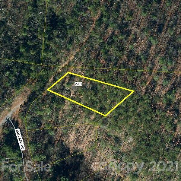 2901 Pine Ridge Drive #1, Connelly Springs, NC 28612 (#3789244) :: Caulder Realty and Land Co.