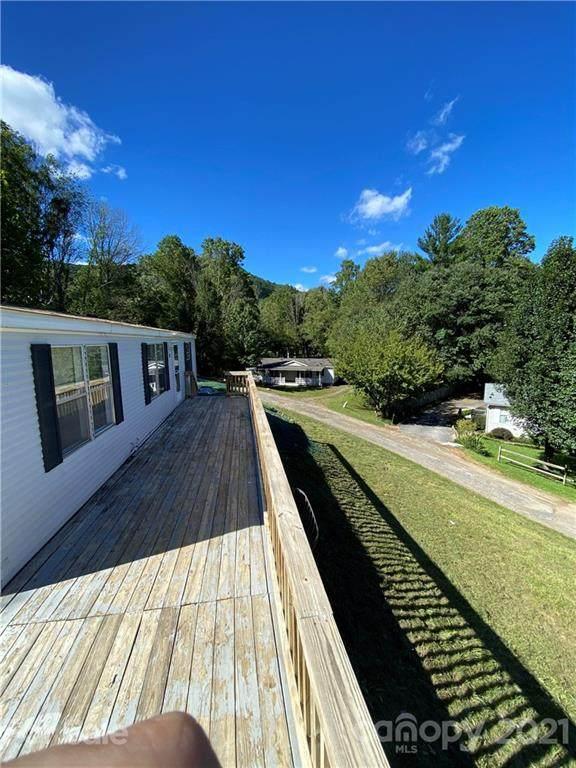 12 Springlawn Way, Asheville, NC 28805 (#3789470) :: Ann Rudd Group
