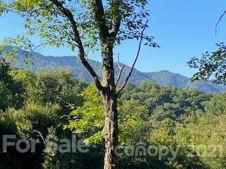 00 Izzie Lane 103-C, Maggie Valley, NC 28751 (#3790155) :: High Vistas Realty