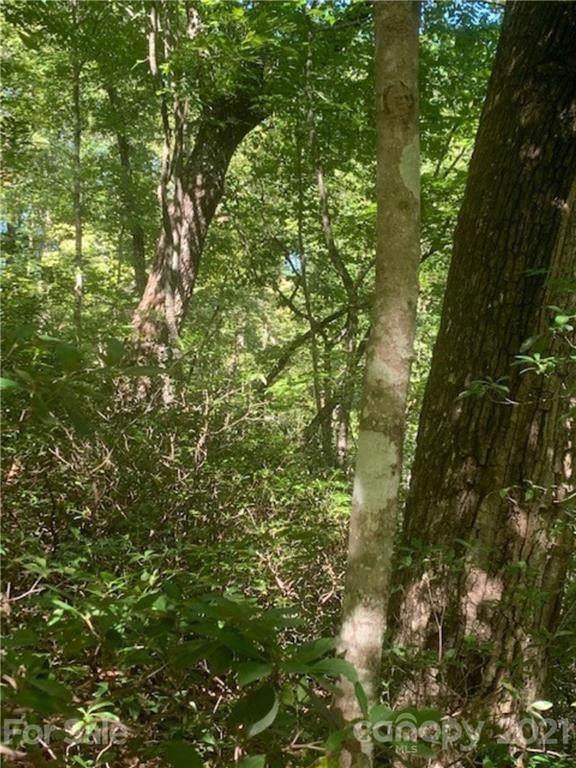 LOT 155 Bonnie Lee Lane, Lake Lure, NC 28746 (#3790596) :: Briggs American Homes
