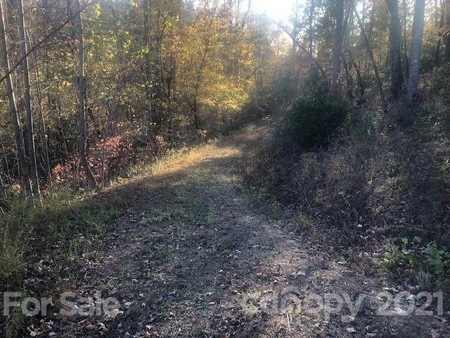 25 Mountain Parkway, Mill Spring, NC 28756 (#3791109) :: Puma & Associates Realty Inc.