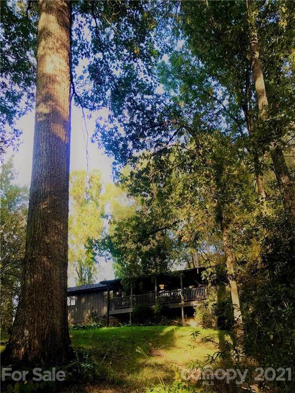 115 Bittersweet Trail, Canton, NC 28716 (#3797350) :: The Allen Team