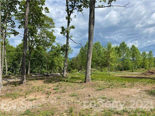 000 John Delk Road #2, Hendersonville, NC 28792 (#3798151) :: Carolina Real Estate Experts