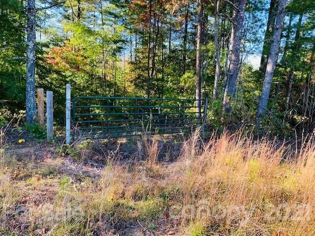 4090 Pea Ridge Road, Morganton, NC 28655 (#3798498) :: Cloninger Properties