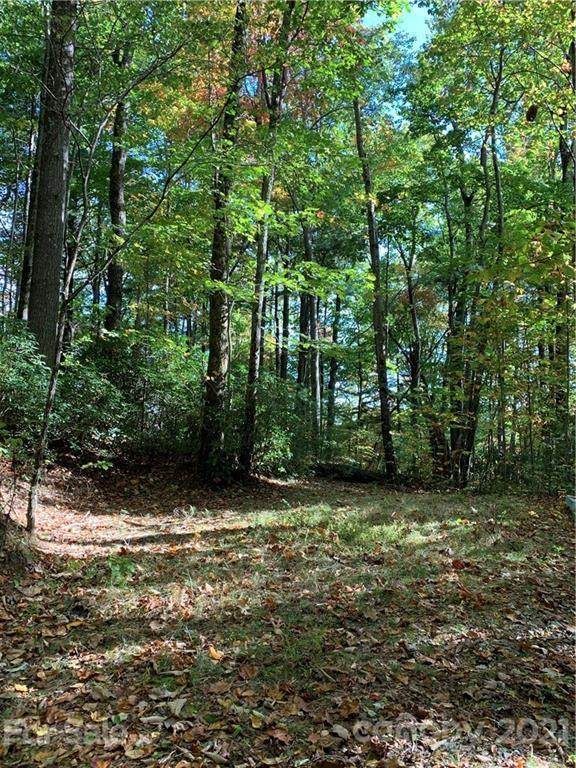 L1 Upper Whitewater Road #1, Sapphire, NC 28774 (#3799226) :: DK Professionals