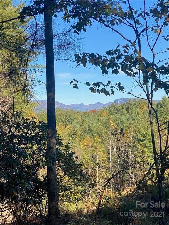 111 Swallowtail Ridge #117, Nebo, NC 28761 (#3800422) :: MartinGroup Properties