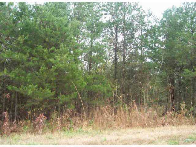 Lot 2 Petes Road, Lincolnton, NC 28092 (#406627) :: Charlotte Home Experts
