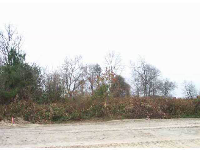 Lot 3 Petes Road, Lincolnton, NC 28092 (#406628) :: Charlotte Home Experts