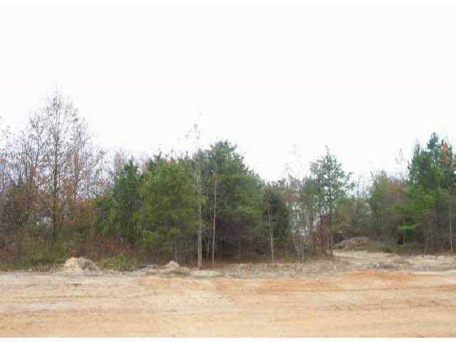 Lot 5 Petes Road, Lincolnton, NC 28092 (#410294) :: Charlotte Home Experts