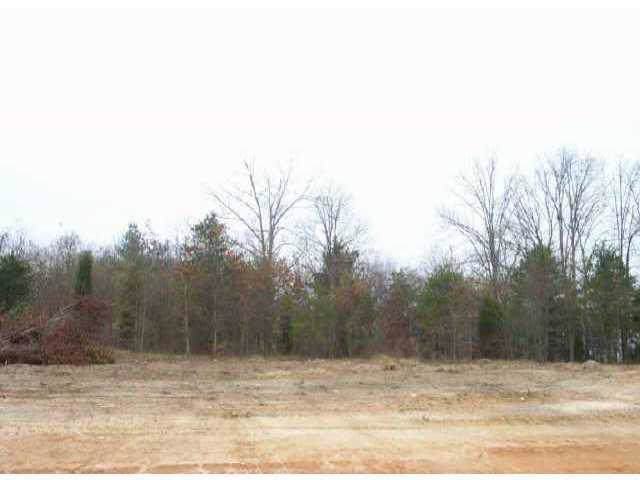 Lot 7 Petes Road, Lincolnton, NC 28092 (#410296) :: Charlotte Home Experts