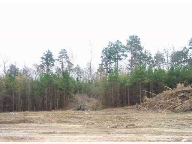 Lot 10 Petes Road, Lincolnton, NC 28092 (#410299) :: Charlotte Home Experts