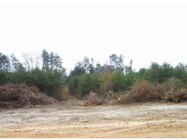 Lot 12 Petes Road, Lincolnton, NC 28092 (#410301) :: Charlotte Home Experts