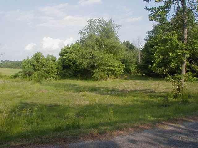 1221 Southwood Drive - Photo 1