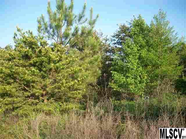 71,72 Jericho Road, Lincolnton, NC 28092 (#9563726) :: Mossy Oak Properties Land and Luxury