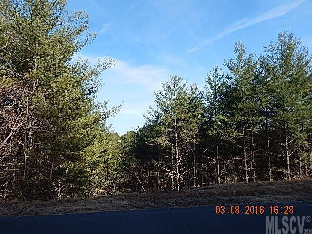 Lot 55 Collette Ridge Circle #55, Lenoir, NC 28645 (#9586892) :: Puma & Associates Realty Inc.