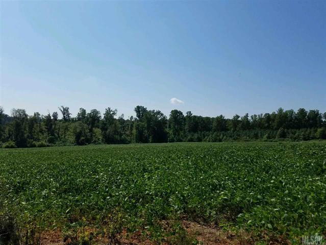 Lot 32 U Meadowview Drive #32, Lawndale, NC 28090 (#9589966) :: LePage Johnson Realty Group, LLC