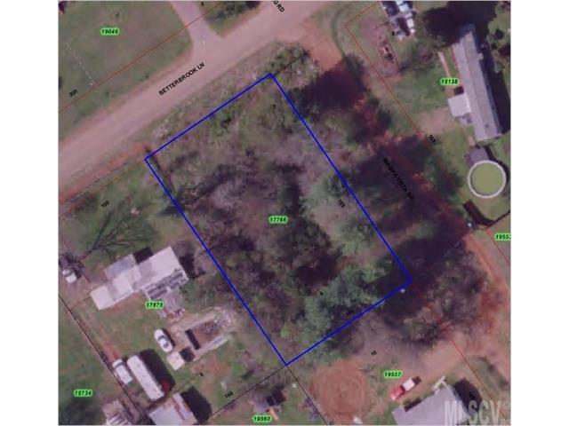 9C Magna Vista Drive 9C, Lincolnton, NC 28092 (#9590440) :: Mossy Oak Properties Land and Luxury