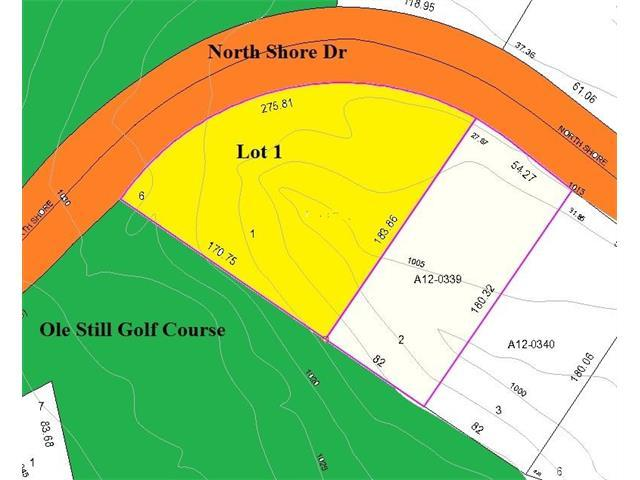 Lot 1 North Shore Drive #1, Hickory, NC 28601 (#9593544) :: Century 21 First Choice