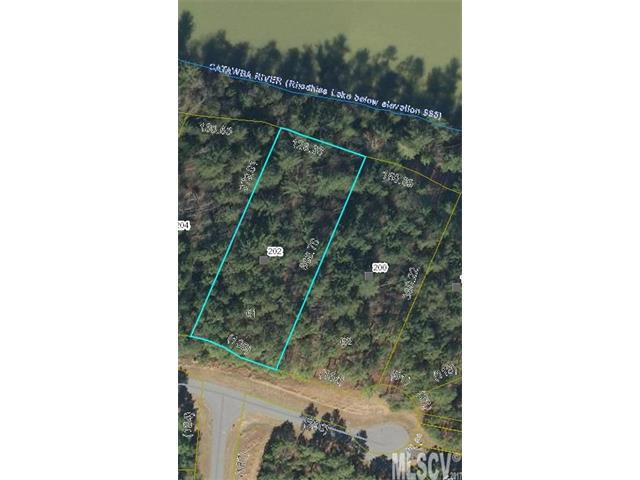 202 Pier Point Drive #61, Connelly Springs, NC 28612 (#9595236) :: Mossy Oak Properties Land and Luxury