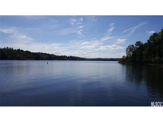 151 Pier Point Drive #9, Stony Point, NC 28678 (#9595631) :: Stephen Cooley Real Estate Group