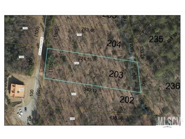 7063 Silver Creek Lane #203, Morganton, NC 28655 (#9596897) :: Stephen Cooley Real Estate Group