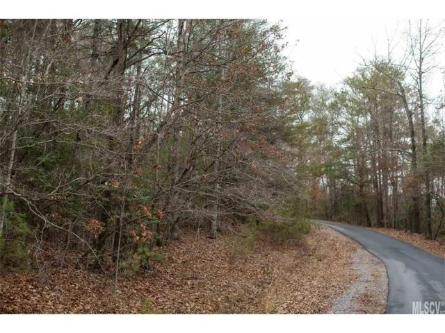 0 Albert Williams Road #1, Connelly Springs, NC 28612 (#9597059) :: Exit Mountain Realty